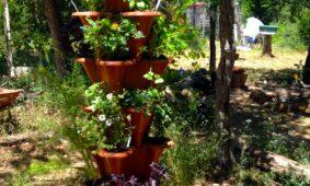 EzGro Garden Girl