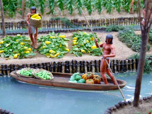 Aztec-chinampas-of-Central-America-2