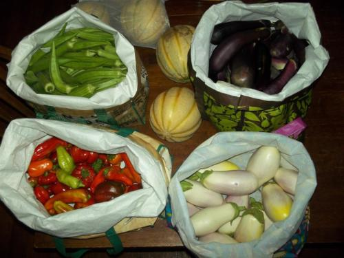 oakra-eggplant-bellpeppers